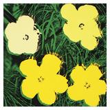 Flowers  1970 (4 yellow)