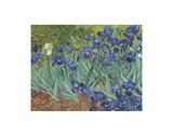 Iris au jardin Reproduction d'art par Vincent Van Gogh