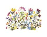High Country Wildflowers N 3