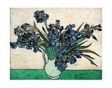Iris Reproduction d'art par Vincent Van Gogh