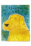 Lab (yellow)