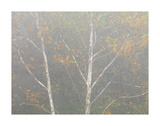 Pastel Tree 1
