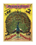 Peacock Styles Anchor Buggy Co ca 1897