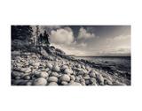 Otter Cliff Coastline