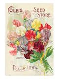 Cole's Seed Store Pella Iowa
