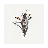 Maïs Reproduction d'art par Linda Woods