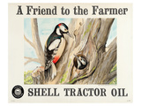 Shell Tractor Oil - Farmer