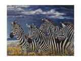 Zebras I