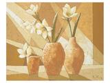 Vases with White Amaryllis