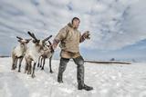 Nenet Herdsman With Reindeer