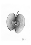 X-Ray Apple