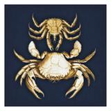 Crabs Navy
