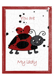My Lady Bug