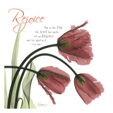 Rejoicing Tulips