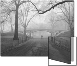 Central Park Gothic Bridge Walker - New York City Landmarks