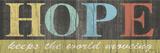 Hope Panel