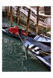 Venice Snapshot I