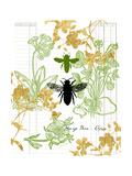 Garden Botanicals & Bees