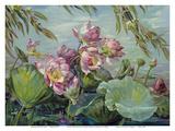 Lotus Land Magic - Lotus Blossoms and Leaves