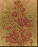 Amalia Tulips