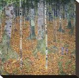 Birch Forest  1903