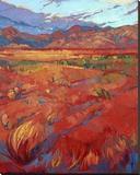 Desert Rainbow (center)