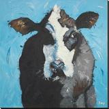 Cow 302