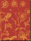 Chrysanthemum 16