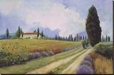 Holiday in Tuscany