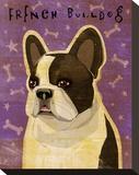 French Bulldog (White Brindle)