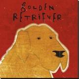 Golden Retriever (square)