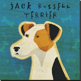 Jack Russell Terrier (square)