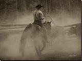 Lost Canyon Cowboy 2