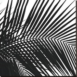 Palms 10 (detail)