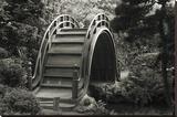 Moon Bridge in Tea Garden