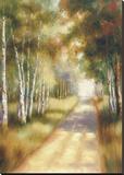 Peaceful Passage