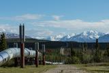 The Trans-Alaska Oil Pipeline