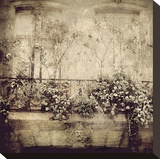 Paris Window Garden