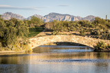 Desert Bridge in Tucson  Arizona
