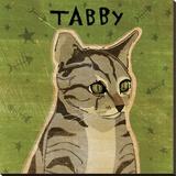 Tabby (grey) (square)