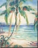 Tropical Breeze II