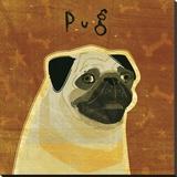 Pug (square)