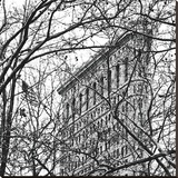 Veiled Flatiron Building (b/w) (detail)
