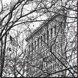 Veiled Flatiron Building (b/w) (detail)