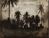 The Beach XIV