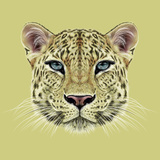 Illustrative Portrait of Leopard Cute Face of African Leopard with Blue Eyes