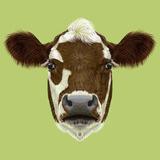 Illustraited Portrait of Cow
