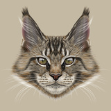 Illustration Portrait of Maine Coon Cat Cute Young Domestic Cat with Green Eyes and Wild Colour