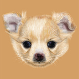 Illustrative Portrait of Chihuahua Puppy Cute White Puppy with Apricot Spots on Skin