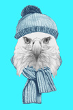 Portrait of Eagle with Hat and Scarf Hand Drawn Illustration